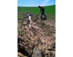 Sol agricole dégradé par l'érosion