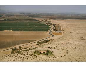 Des champs irrigués en plein désert