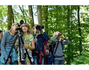 Groupe d'élèves en train d'observer la nature avec des jumelles