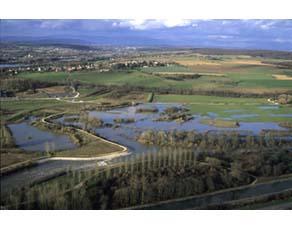 Zone naturelle inondable de l'Allan Brognard, Doubs