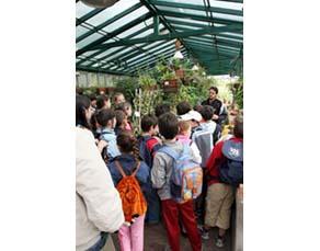 Enfants dans une serre du Jardin botanique de Réa en Italie