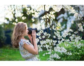 Jeune fille photographiant un cerisier