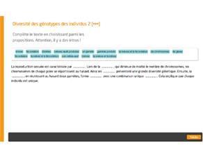 Diversité des génotypes des individus 2