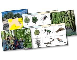La biodiversité de différents écosystèmes