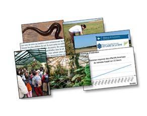 Activités humaines et impacts à l'échelle régionale