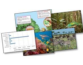 La biodiversité actuelle