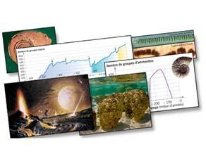 Les changements de biodiversité sur Terre