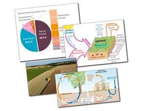 Des agrosystèmes producteurs de biomasse