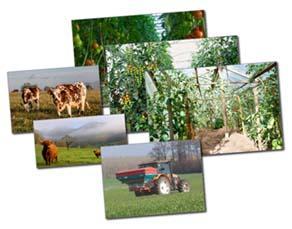Différents modèles agricoles