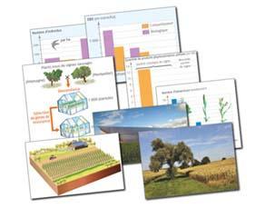 Le développement d'une agriculture durable