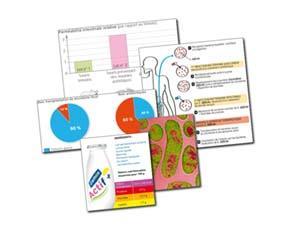 Rééquilibrer le microbiote dans certaines pathologies